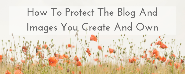 PROTECT YOUR BLOG ASSETS
